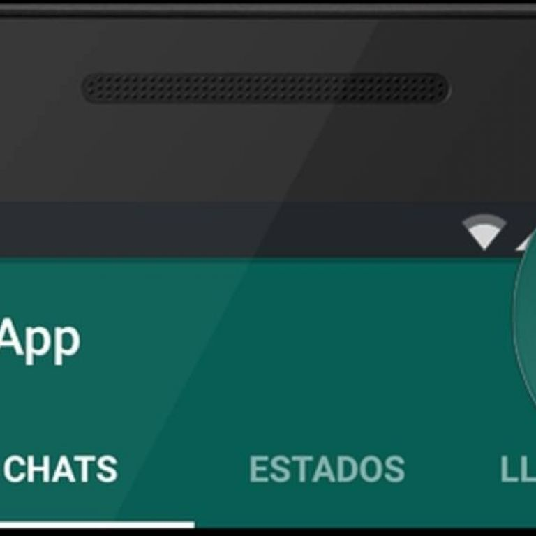 WhatsApp: Cómo compartir las actualizaciones de estados con otras aplicaciones