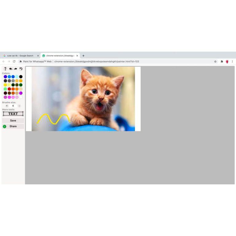 WhatsApp Web: te decimos cómo agregar Paint al servicio en línea