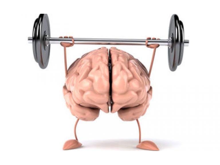 ¿Cómo entrenar el cerebro con Internet?